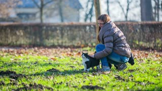 Girl patting cat in green park. Long shot of black and white cat in green grass with attractive female person in jacket patting.