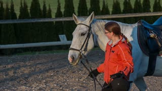 Girl walk beside horse after dressage. Tracking young woman in orange jacket walk with white horse inside the fence after training.