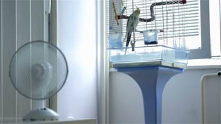 Hot Summer Ventilator Blowing Air