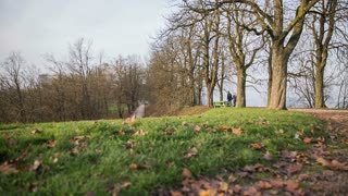 LJUBLJANA, SLOVENIA - NOVEMBER 2014: People in park in top of hill. Nature shot with paths and tall tress and people strolling.