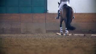Low Angle Shoot of Horse Riding In Slow Motion