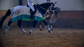 Olympic Dressed Horse in Slow Motion