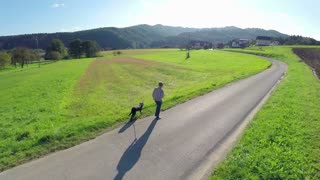 Person walk black dog on empty countryside road side aerial shoot. Air shot of person with dog walk on empty street at sunset in slow motion with green fields around.