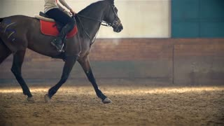 Slow Motion Riding Horse Galloping