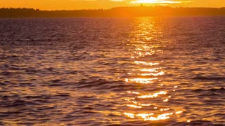 Sunset reflection in wavy sea.Golden colors of sun in waves of sea wide shot.