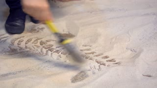 4k, Young Asian boy playing in the sandbox at dinosaurs museum