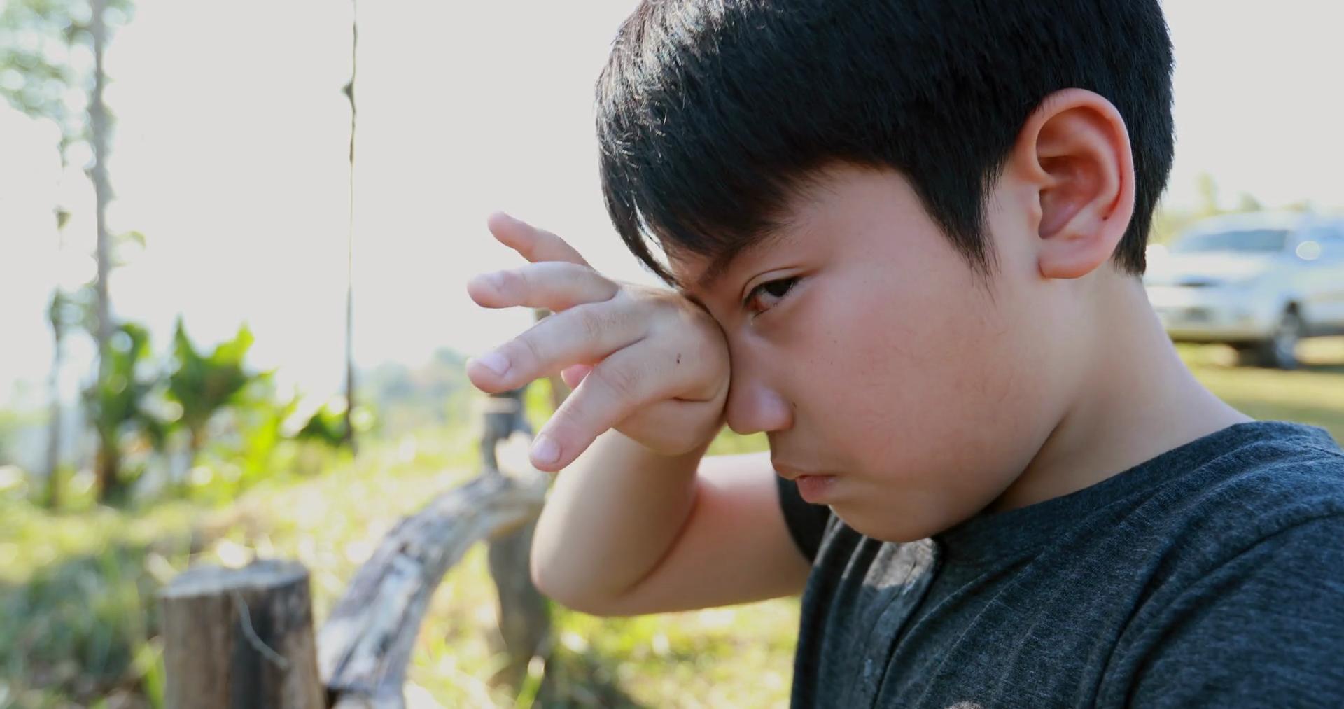 Asian boy crying in garden Stock Video Footage - Storyblocks