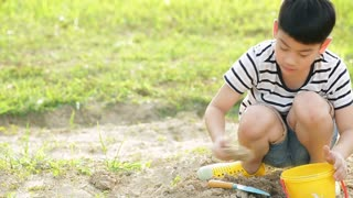 Asian cute boy playing with toys in garden,