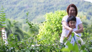 Asian mother and son are watering the tree, standing in the shade of a tree in the garden