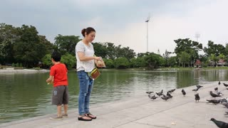 Asian woman with her son Feeding Pigeons In Park, Outdoors, Nature, Summer, Birds, Back Shot