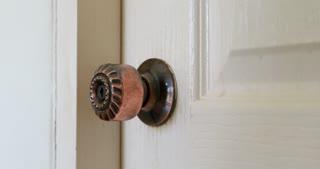 Hand open door Macro shot with focus on the handle .