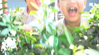 Happy asian Boy are playing hide and seek with smile face, Slow motion 120 Fps By sony a6300