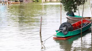 motor boat of thai fisherman near river