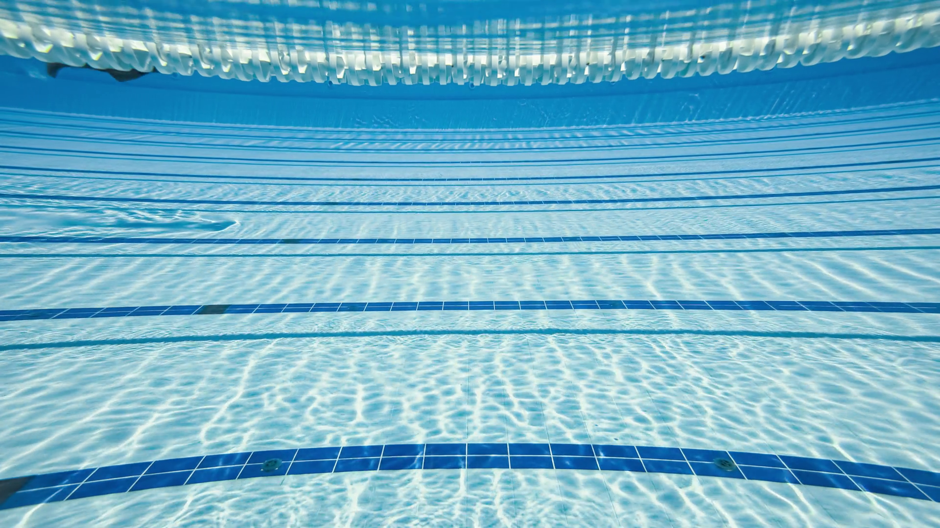 Olympic Swimming Pool Underwater Background Stock Video Footage Storyblocks