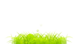 Abstract summer grass motion graphic design. Video animation HD 1920x1080