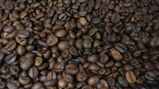 Falling And Rotation Roasted Coffee Beans