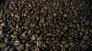 Rotating Roasted Brown Coffee Beans