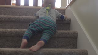 a baby boy going down stairs with bird