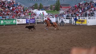 a cowboy calf roping in rodeo slow motion