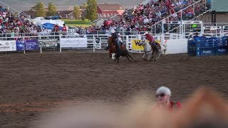 a cowboy steer wrestling at rodeo slow motion