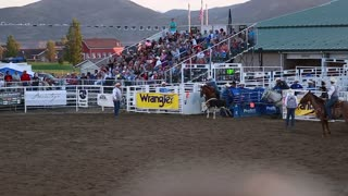 a cowboy steer wrestling in rodeo slow motion
