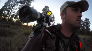 A deer hunter walks through green woods with rifle