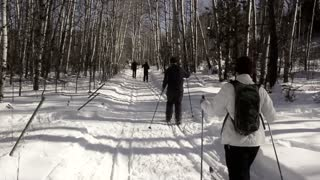 a group cross country skiing on the mountain