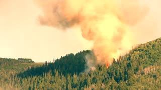 A huge mountain forest fire with smoke on a summer day