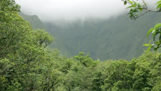 A jungle mountain shrouded in clouds on Kauai, Hawaii