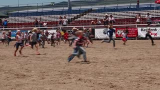 a kids pig chase at kids rodeo