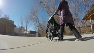 a mother with a stroller walk the zoo
