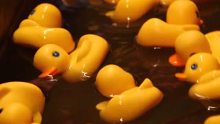 A rubber ducky game at a carnival