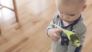 a toddler playing with his bird in his home
