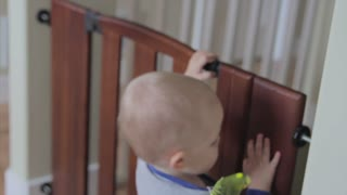 a toddler with a bird playing with child gate