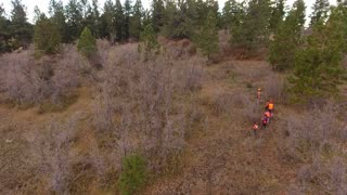 Aerial dolly shot of family walking through the woods hunting