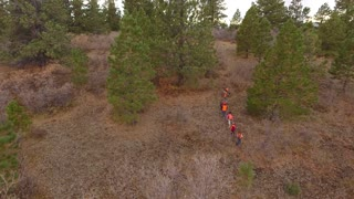 Aerial shot of a family walking through the woods hunting