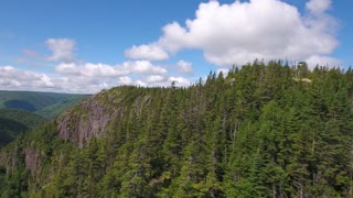 Aerial shot of cliffs and a deep gorge and a mountain forest
