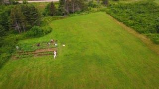Aerial shot of people in community garden