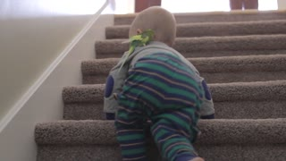 baby boy playing with his bird on stairs