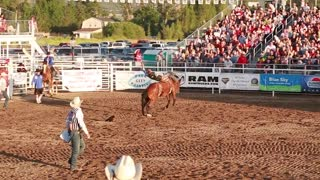 bareback ride in a rodeo slow motion