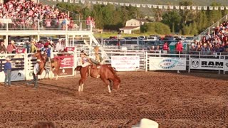 bareback riding in a rodeo slow motion