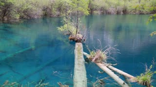 beautiful clear blue lake in jiuzhaigou valley national park in china dolly