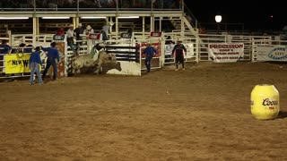 bull rider in rodeo in slow motion