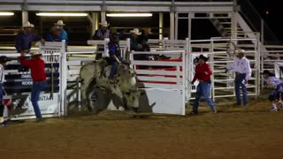 Bull riding at the rodeo 2
