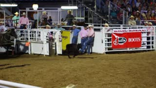 Calf Roping Event at Rodeo Slow Motion