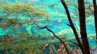 clear blue lake in jiuzhaigou valley national park in china dolly shot