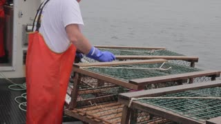 commercial lobster fisherman throwing out their traps