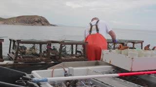 commercial lobster fishermen on boat
