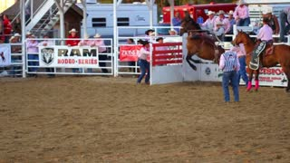 Cowboy Bucked Off of Wild Horse at Rodeo