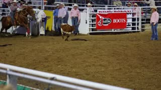 Cowboy Calf Roping at Rodeo Slow Motion